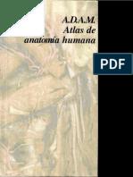 ADAM Atlas de Anatomía Humana - OLSON 1997
