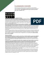 46560894-El-Calendario-Judio-Permanencia-y-Renovacion.docx