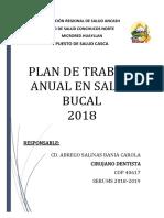 Plan de Trabajo Anual Salud Bucal (1)