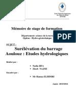 Rapport de Stage Nadia Hfa Zineb Najmi PDF