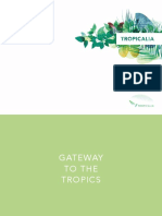 TropicaliaDossierdepressENG.pdf