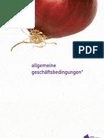 Allgemeine Geschäftsbedingungen der more onion e-campaigning OG