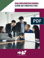 Manual Estrategia organizacional y dirección de proyectos