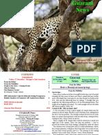 Guarani News 465
