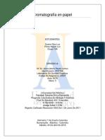 Cromatografía en papel.docx