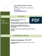 3 Curriculum Vitae Cronologico Verde