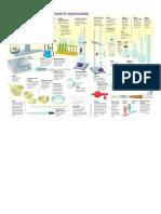 Ficha Materiales de Laboratorio