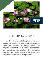 5 ESES (5 S)