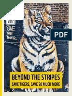 Rapport_beyond_the_stripes.pdf
