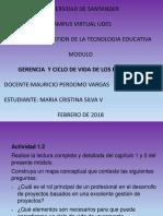 Maria Cristina  silvaGerencia y Ciclo de Vida de los Proyectos. - copia.pptx