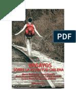 Monares_Delincuencia-Juvenil_2010.pdf