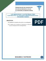 Los-Aminoacidos-y-Las-Proteinas-Como-Electrolitos.docx