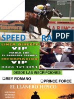 Speed Sabado 25-08-2018