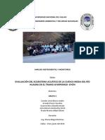 Evaluacion de ecosistema acuatico cuenca media churin.docx