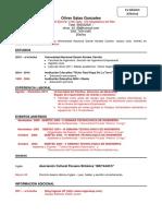 modelos-de-cv (1).docx