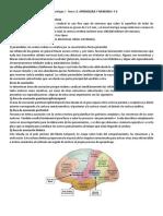 Tema 13. Aprendizaje y Memoria- Apuntes de Clase