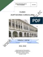 PLANES de ADAPTAC CURRIC.pdf-discapacidad Intelectual