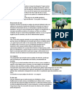 animal en peligro.docx