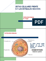3. Adaptación celular (pag. 68).pdf