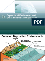 Depositional Environment and Gross Lithologies Interpretation