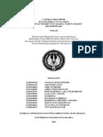 laporan Kelompok KKN 2041.pdf