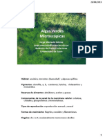 05- Algas verdes I.pdf