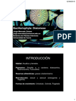 06 - Diatomeas.pdf