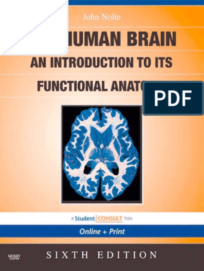 The Human Brain: an Introduction to Its Functional Anatomy - John ...