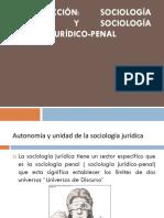 Sociologia Juridica