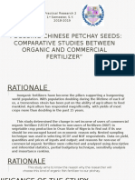 Focusing Chinese Petchay Seeds