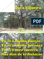 AINDA QUE A FIGUEIRA.pptx