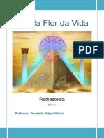 Radiestesia e flor da vida.pdf