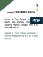 519300877.Powerpoint - Moluscos y Anelidos - 2018