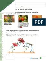 Articles-25366 Recurso Docx