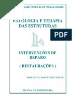 Patologia e terapia das estruturas - Prof. Élvio Mosci Piancastelli.pdf
