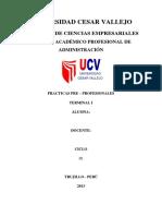 INFORME_DE_PRACTICA_PRE_PROFESIONALES.docx