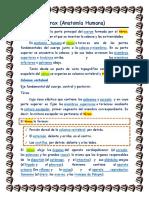 Merari de Ita Reyes_Reto4_herramientas