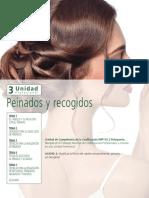 Peinados y recogidos. 3 Unidad TEMA 1 EL CABELLO Y SU RELACIÓN CON EL PEINADO TEMA 2 VISAJISMO PARA LA SELECCIÓN DE PEINADOS.pdf
