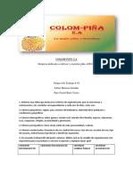 """Evidencia 5 Tabla de Datos """"Identificación Del Segmento"""""""