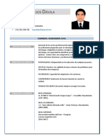 NELSON VALLEJOS DAVILA - CV.pdf