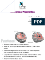2 Membrana Plasmatica.ppt