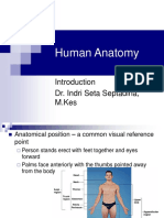 Anatomi Umum.ppt