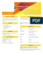 Curriculum Vitae Document(43)
