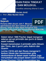 Power Point Dna Rna