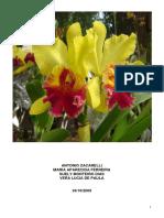 trabalhoflorais.pdf