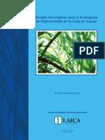 Escalas Descriptivas para la Evaluación de Enfermedades de la Caña de Azúcar (2).pdf