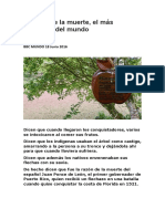 El Árbol de La Muerte Bbc Mundo 18 Junio 2016