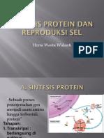 Sintesis Protein Dan Reproduksi Sel