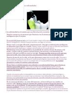 El origen metafísico de las enfermedades.doc