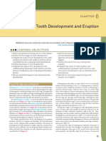 Tooth Development and Eruption c6